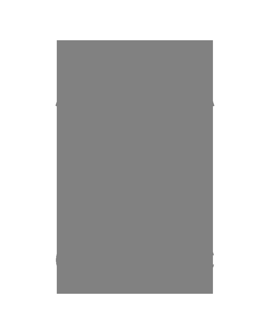 logo duo